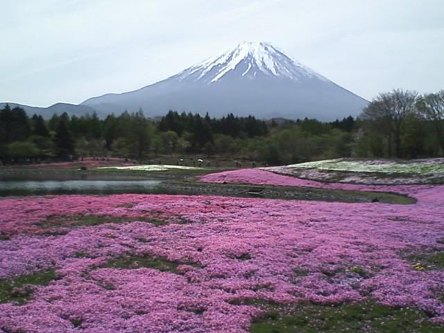 motosu high-land